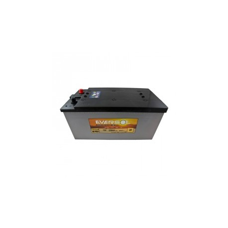 Batterie AGM ML185C EV-M16G220AGM